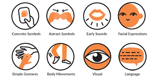 Images of concrete symbols, abstract symbols, early sounds, facial expressions, simple gestures, body movements, visual, and language